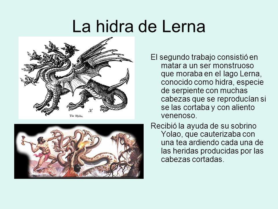 La hidra de Lerna