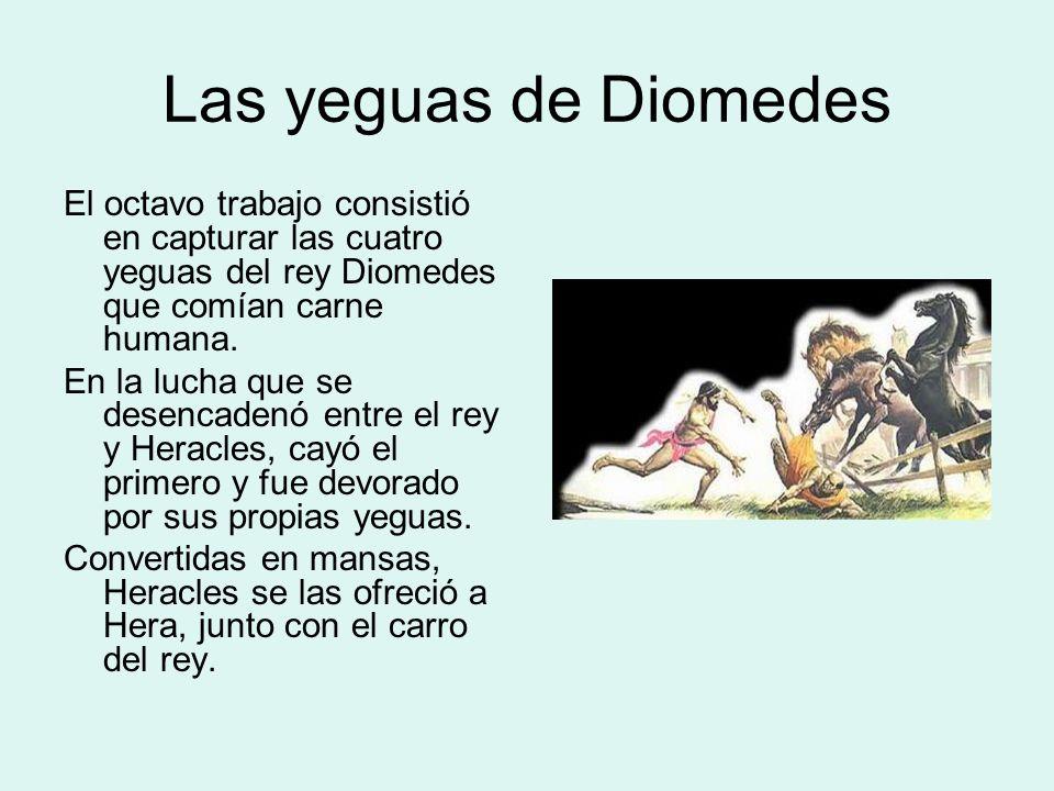Las yeguas de DiomedesEl octavo trabajo consistió en capturar las cuatro yeguas del rey Diomedes que comían carne humana.