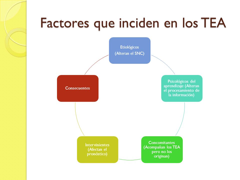 Factores que inciden en los TEA