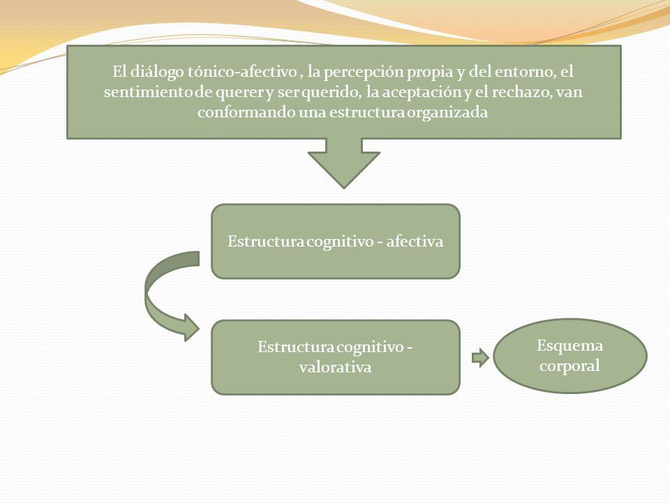 Estructura cognitivo - afectiva