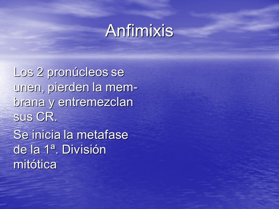 Anfimixis Se inicia la metafase de la 1ª. División mitótica