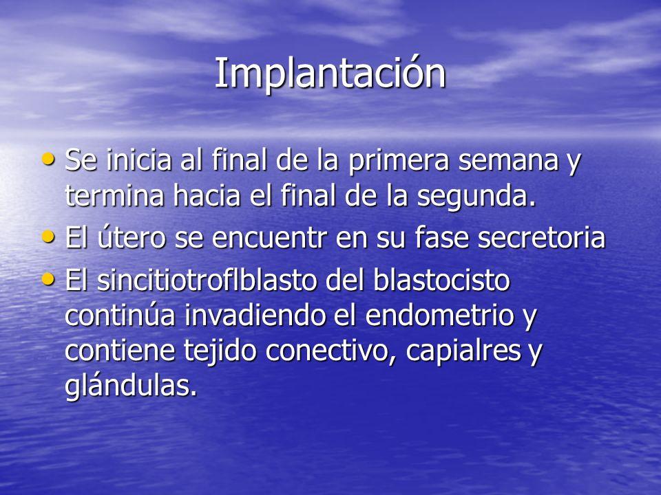 ImplantaciónSe inicia al final de la primera semana y termina hacia el final de la segunda. El útero se encuentr en su fase secretoria.