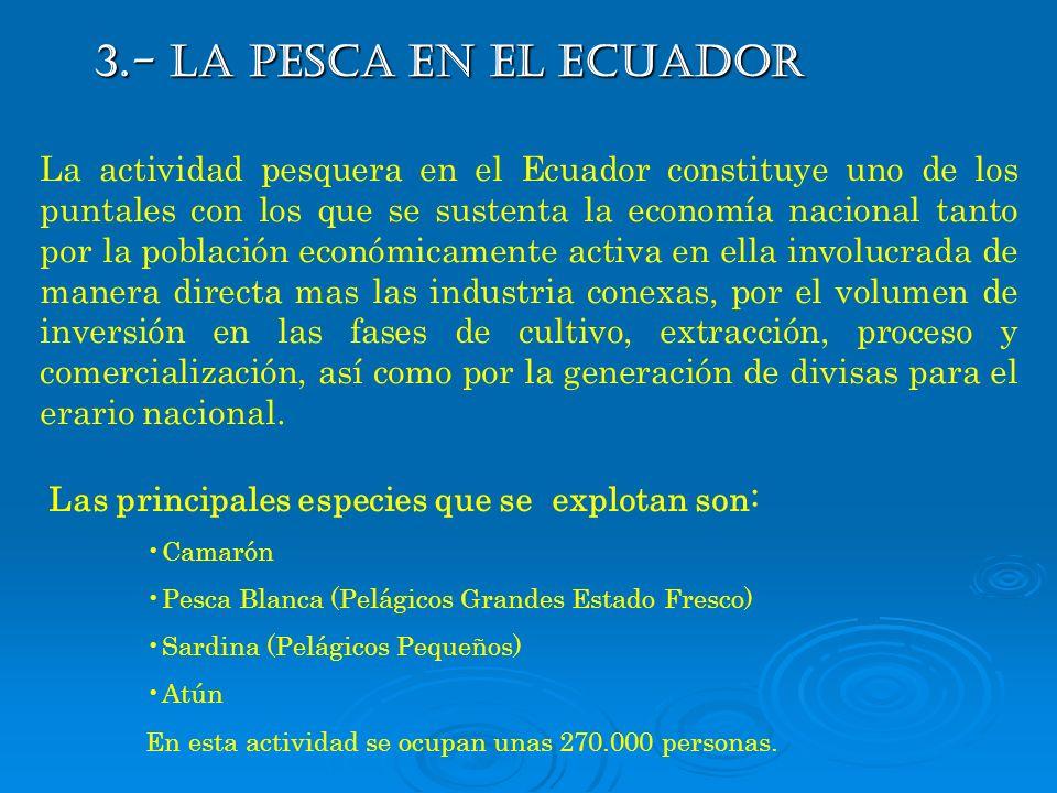 3.- LA PESCA EN EL ECUADOR
