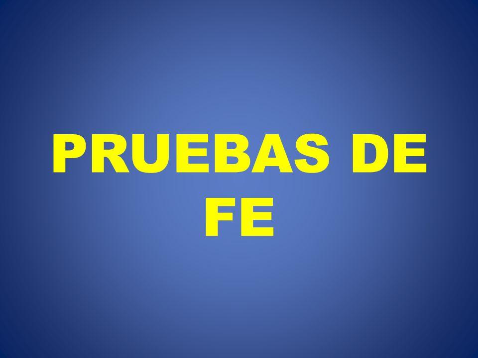PRUEBAS DE FE