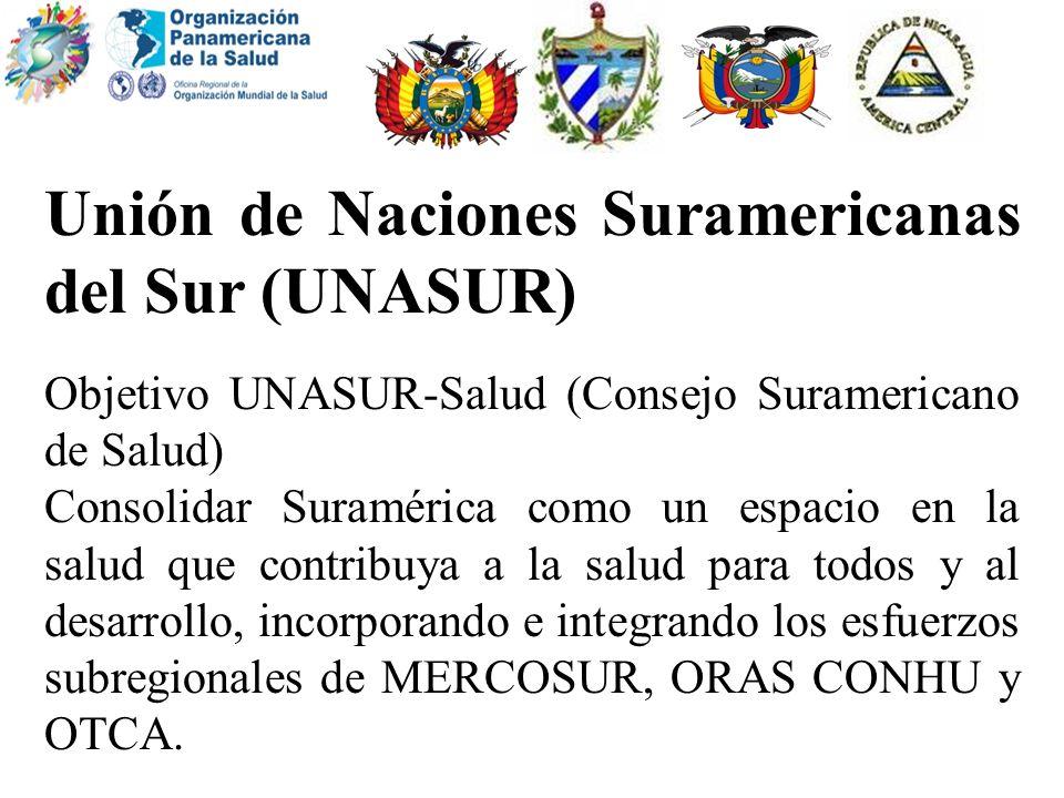Unión de Naciones Suramericanas del Sur (UNASUR)