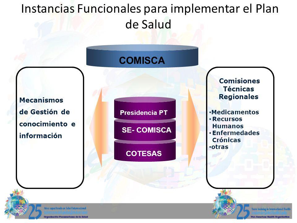 Instancias Funcionales para implementar el Plan de Salud
