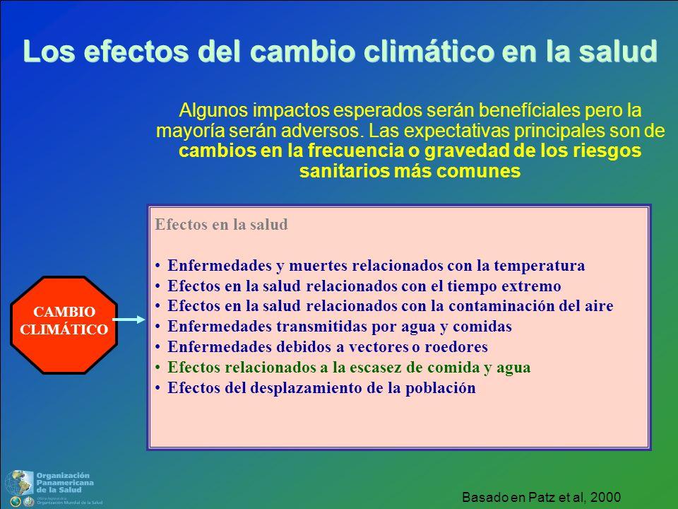 Los efectos del cambio climático en la salud