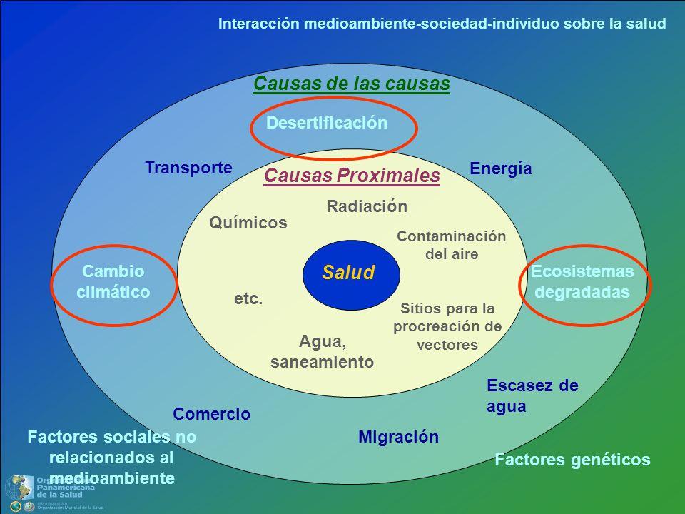 Causas de las causas Causas Proximales Salud Desertificación