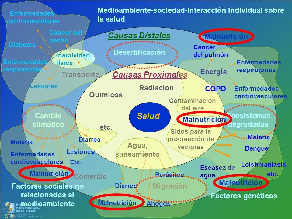 Causas Dístales Causas Proximales Salud