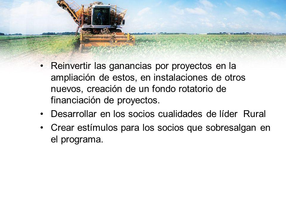 Reinvertir las ganancias por proyectos en la ampliación de estos, en instalaciones de otros nuevos, creación de un fondo rotatorio de financiación de proyectos.