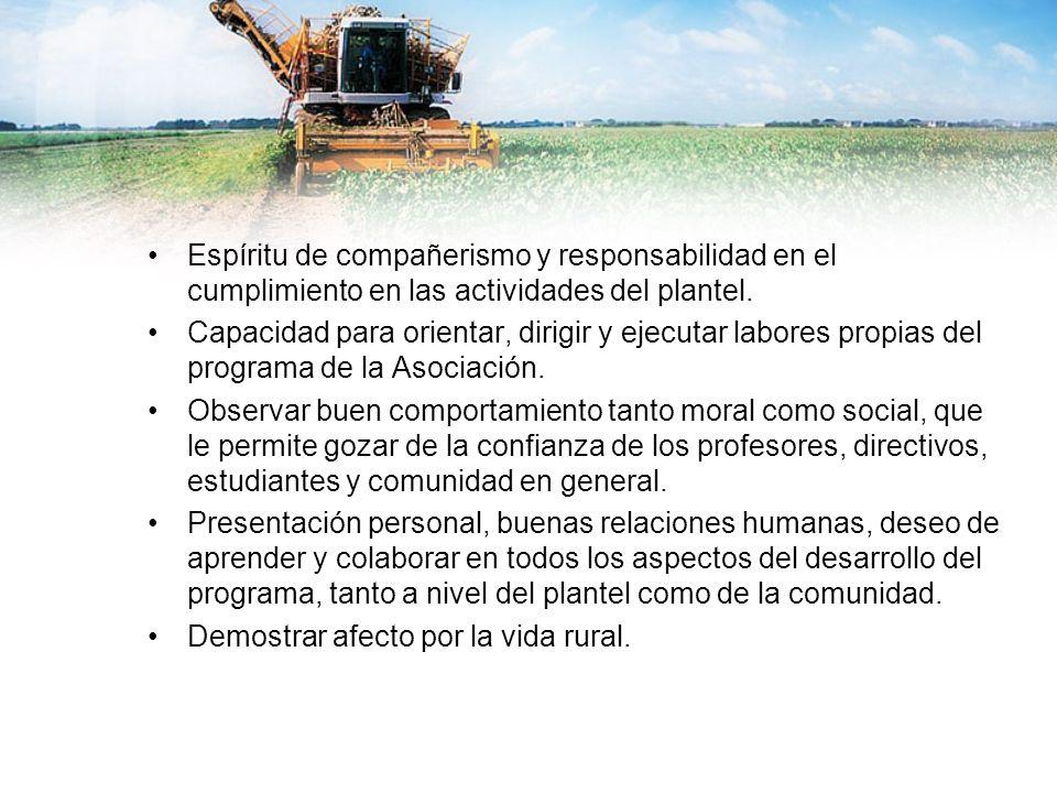 Espíritu de compañerismo y responsabilidad en el cumplimiento en las actividades del plantel.