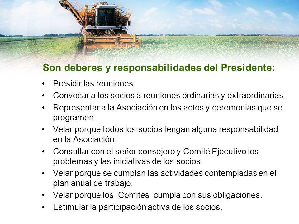 Son deberes y responsabilidades del Presidente: