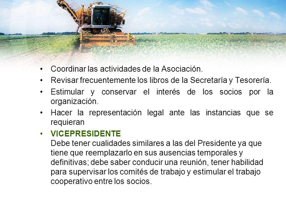 Coordinar las actividades de la Asociación.