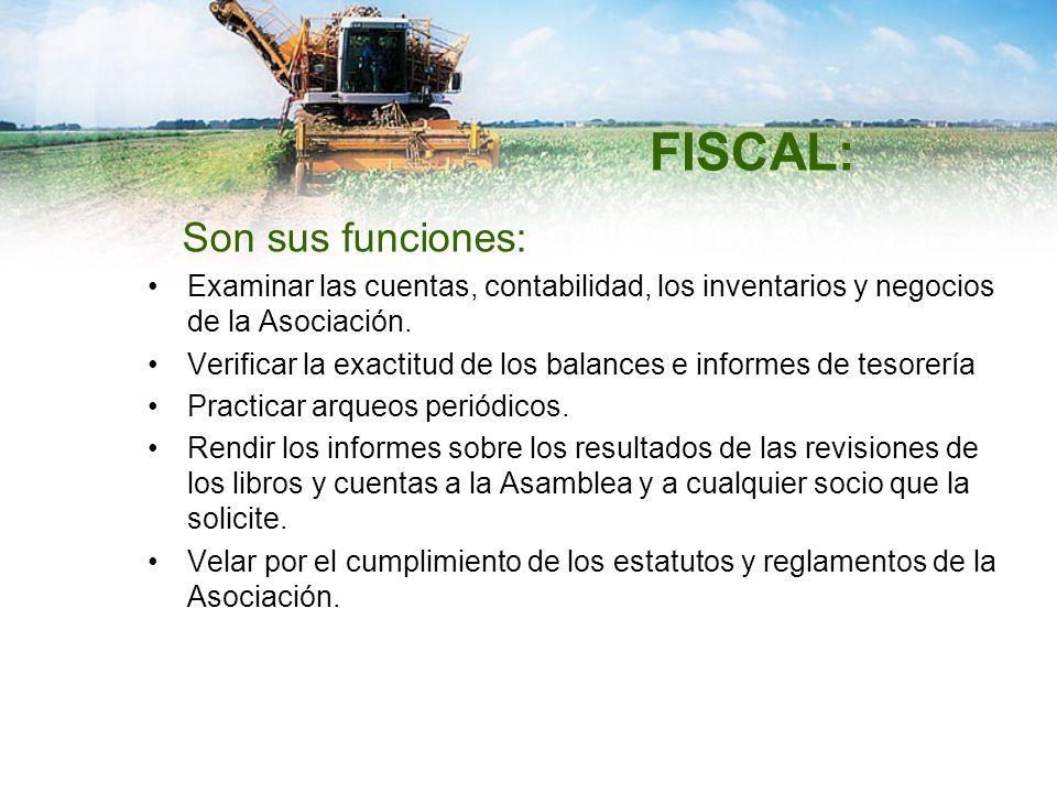 FISCAL: Son sus funciones: