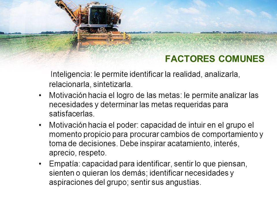 FACTORES COMUNES Inteligencia: le permite identificar la realidad, analizarla, relacionarla, sintetizarla.