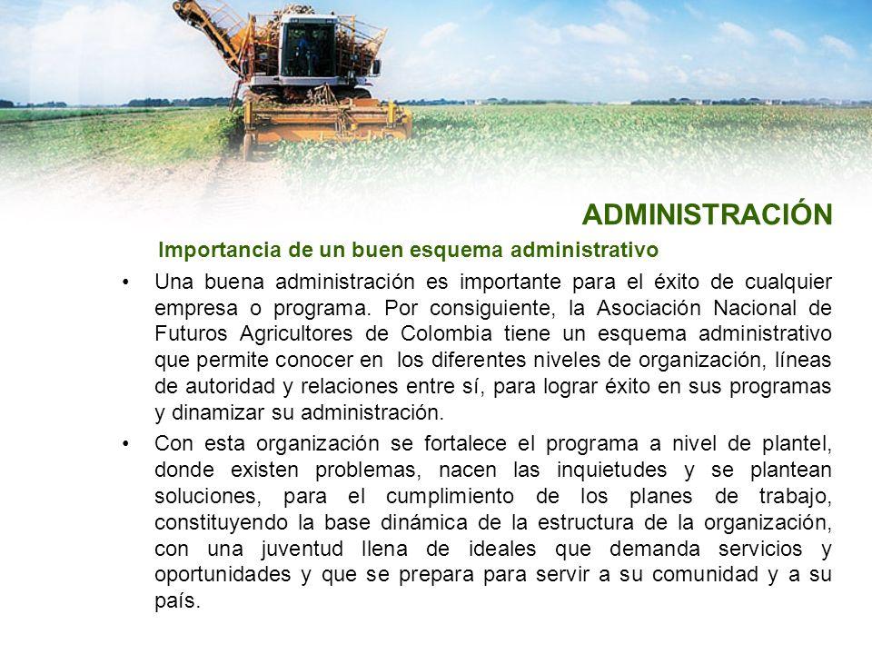 ADMINISTRACIÓN Importancia de un buen esquema administrativo