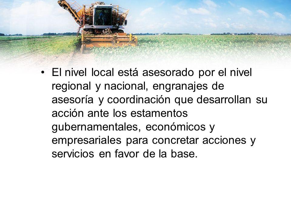 El nivel local está asesorado por el nivel regional y nacional, engranajes de asesoría y coordinación que desarrollan su acción ante los estamentos gubernamentales, económicos y empresariales para concretar acciones y servicios en favor de la base.