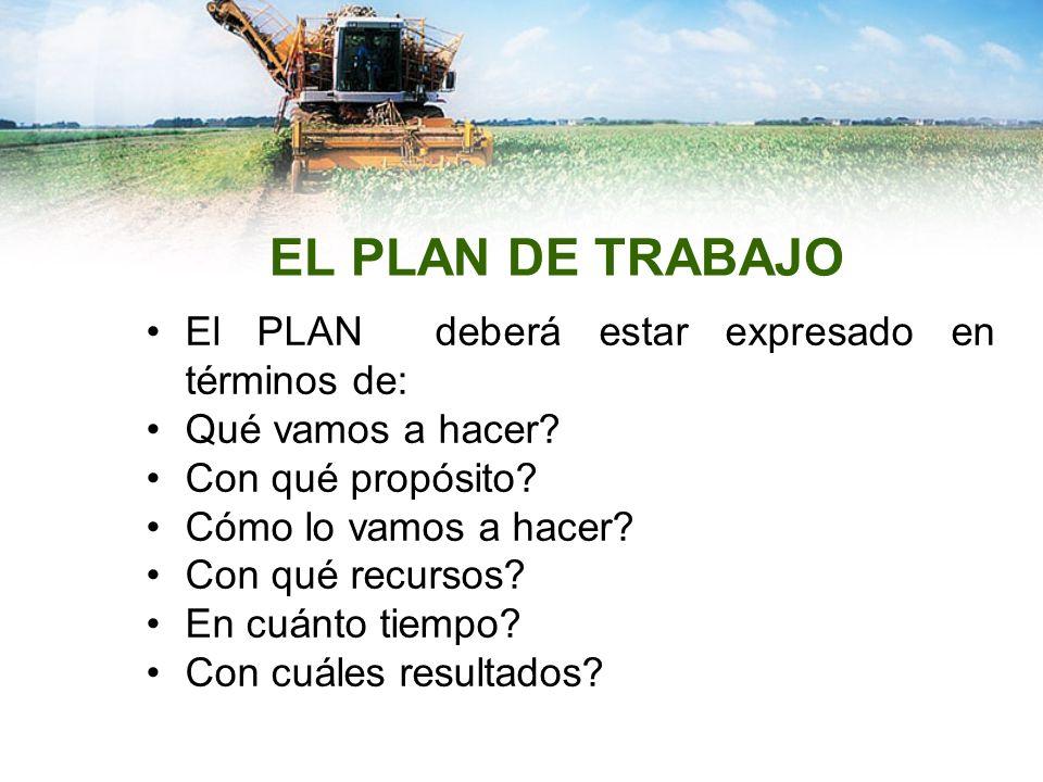 EL PLAN DE TRABAJO El PLAN deberá estar expresado en términos de: