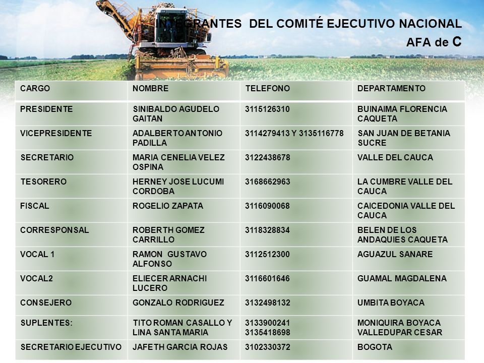 INTEGRANTES DEL COMITÉ EJECUTIVO NACIONAL AFA de C