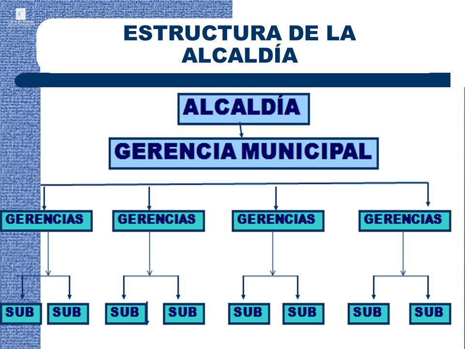 ESTRUCTURA DE LA ALCALDÍA