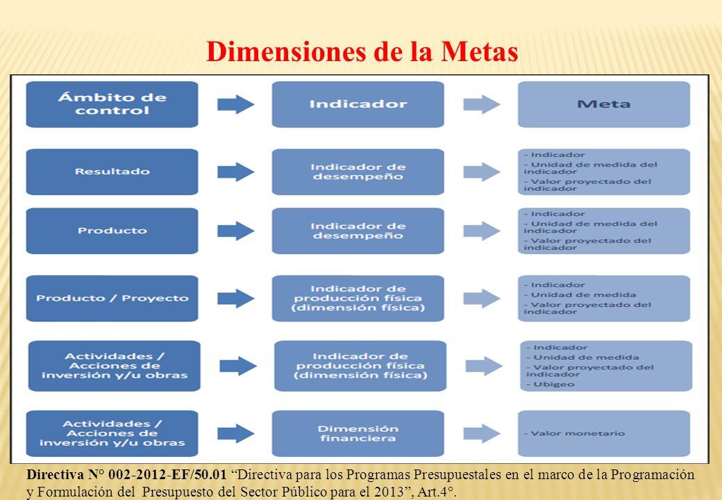 Dimensiones de la Metas