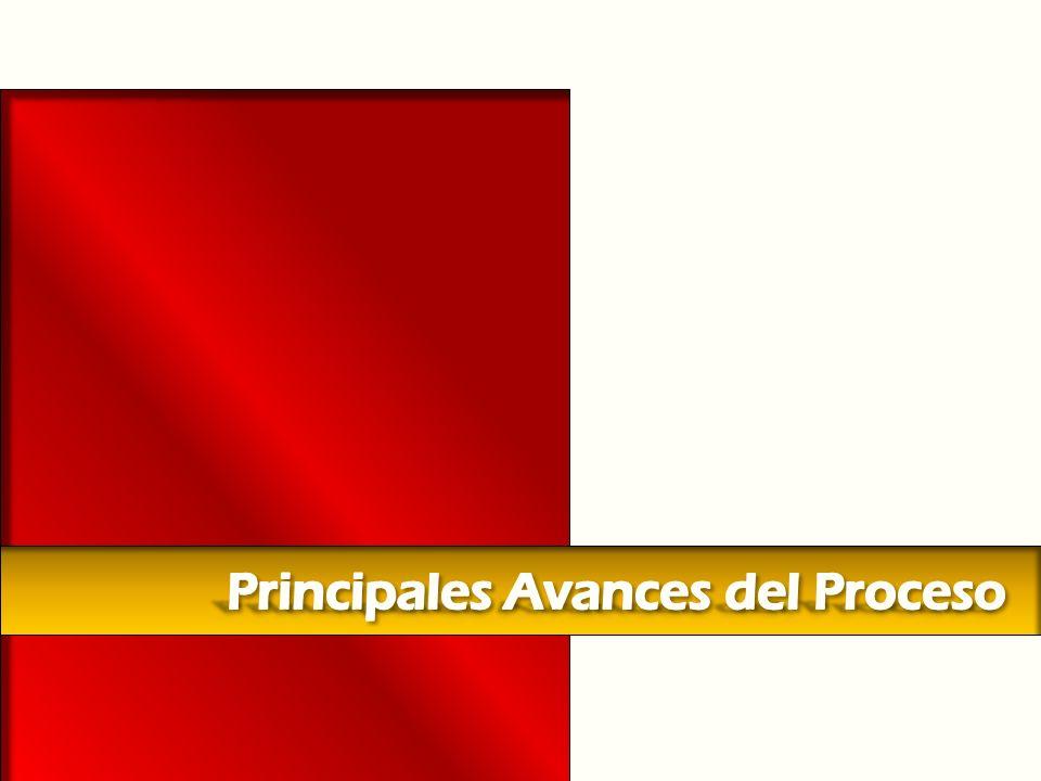 Principales Avances del Proceso