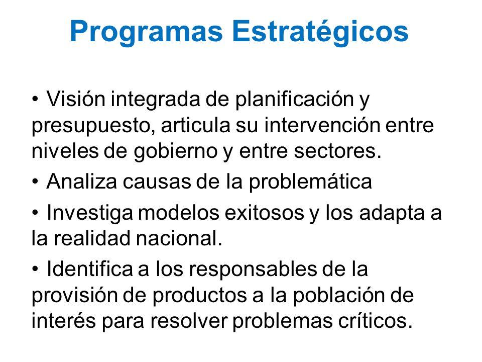 Programas Estratégicos