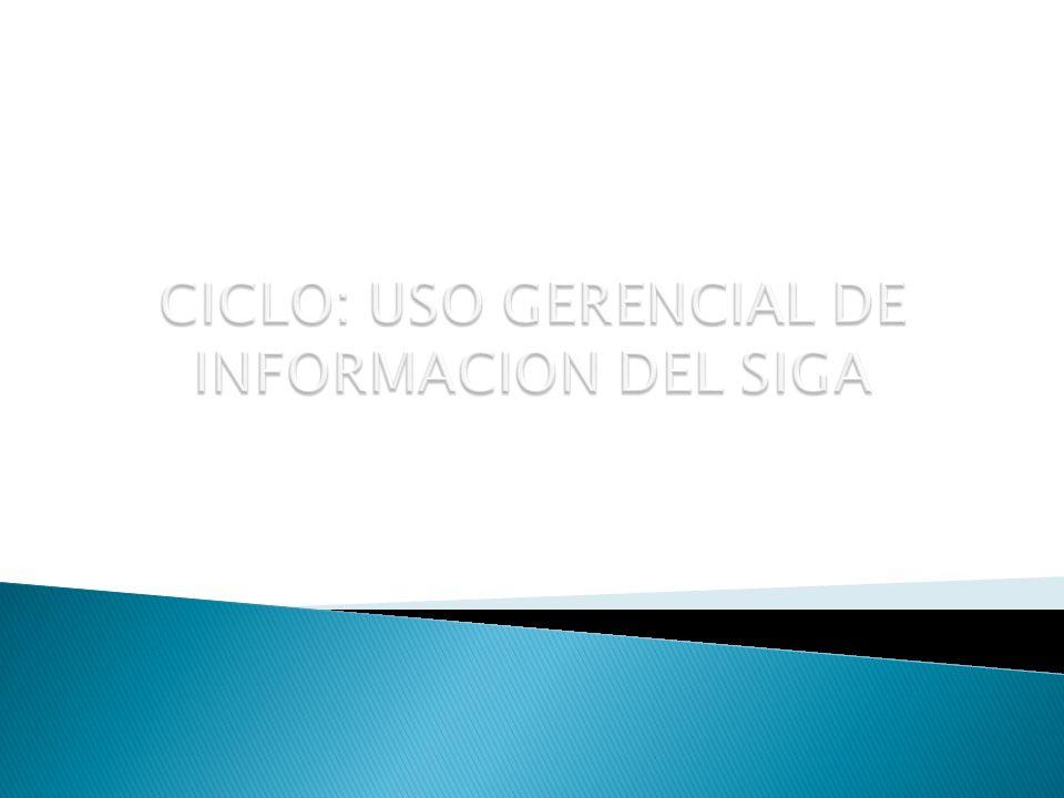 CICLO: USO GERENCIAL DE INFORMACION DEL SIGA