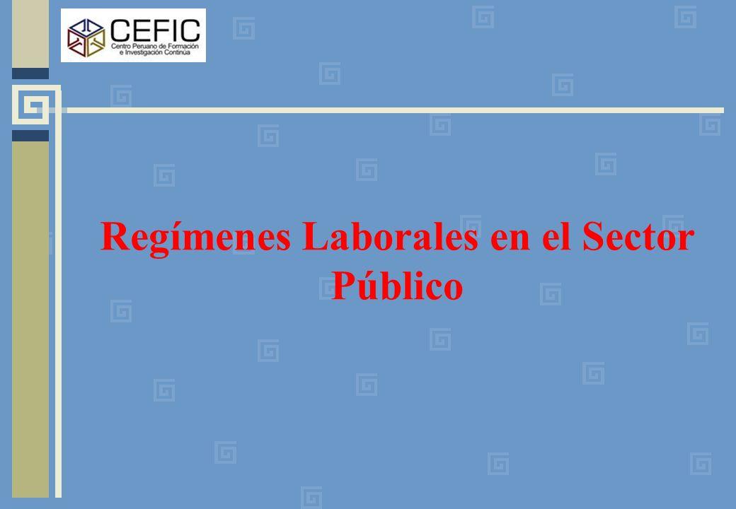 Regímenes Laborales en el Sector Público