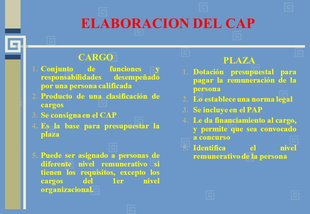 ELABORACION DEL CAP CARGO PLAZA