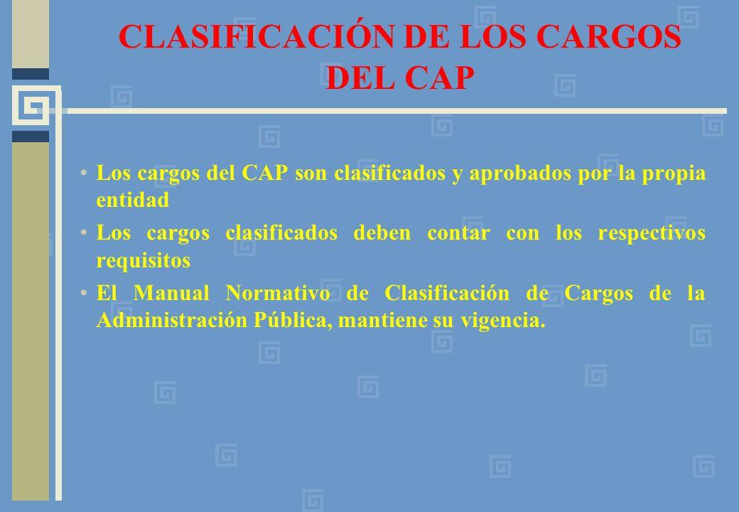 CLASIFICACIÓN DE LOS CARGOS DEL CAP
