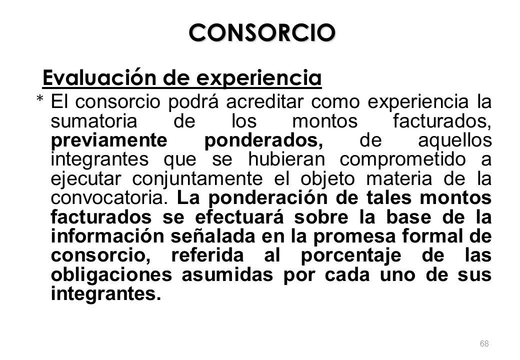 CONSORCIO Evaluación de experiencia