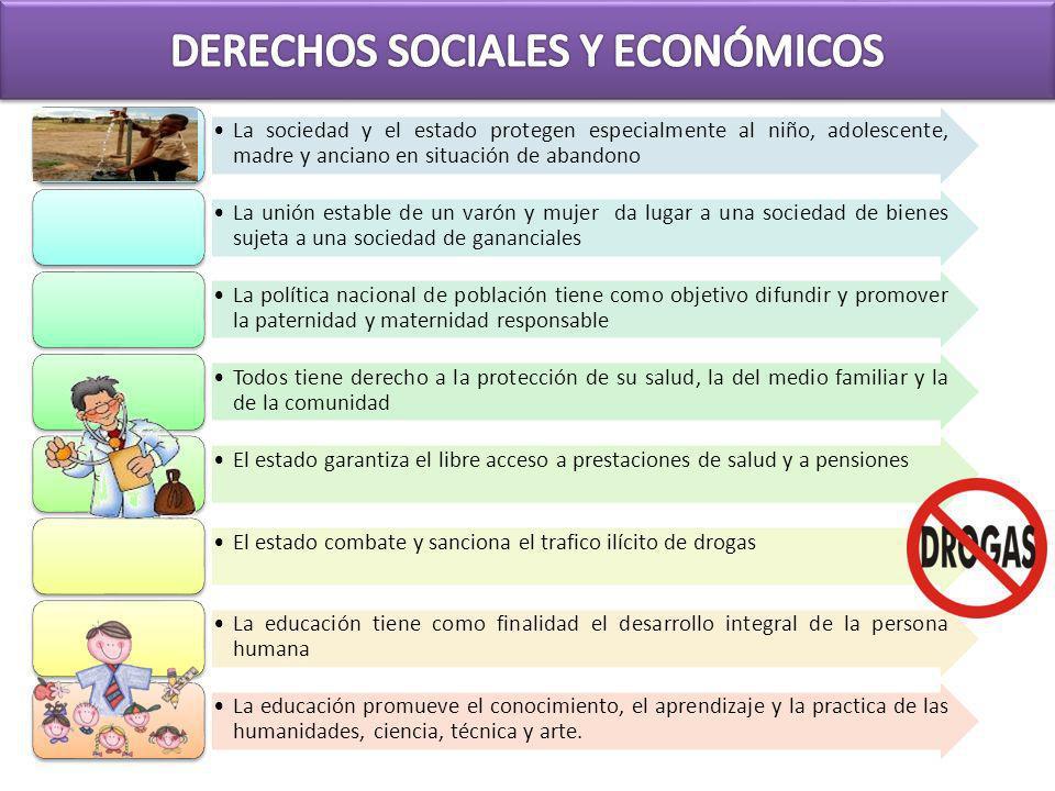 DERECHOS SOCIALES Y ECONÓMICOS