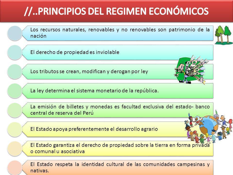 //..PRINCIPIOS DEL REGIMEN ECONÓMICOS