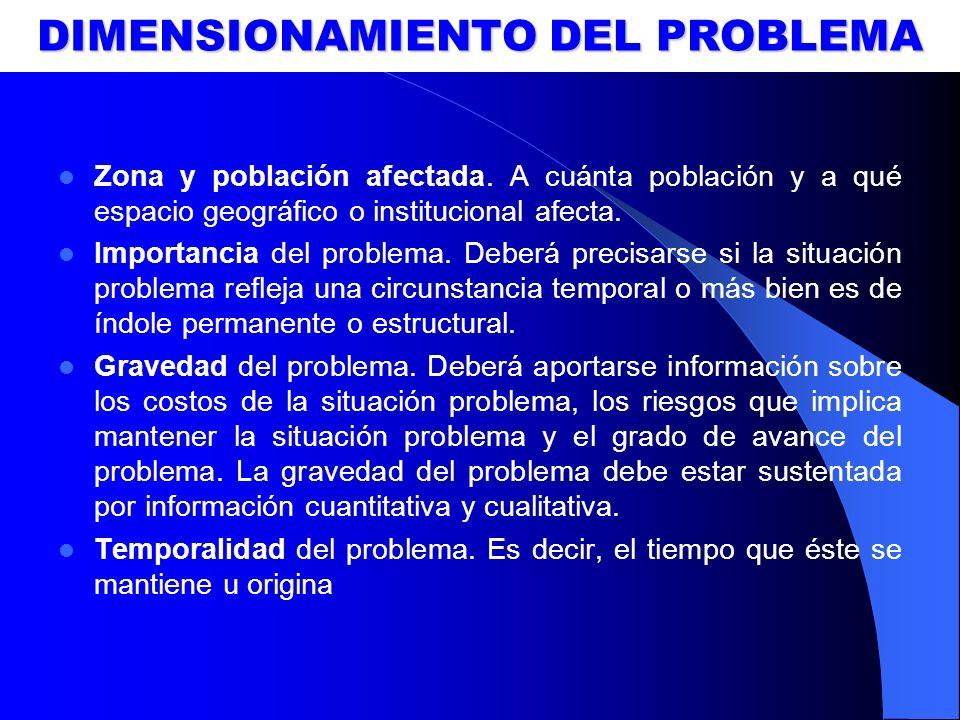 DIMENSIONAMIENTO DEL PROBLEMA
