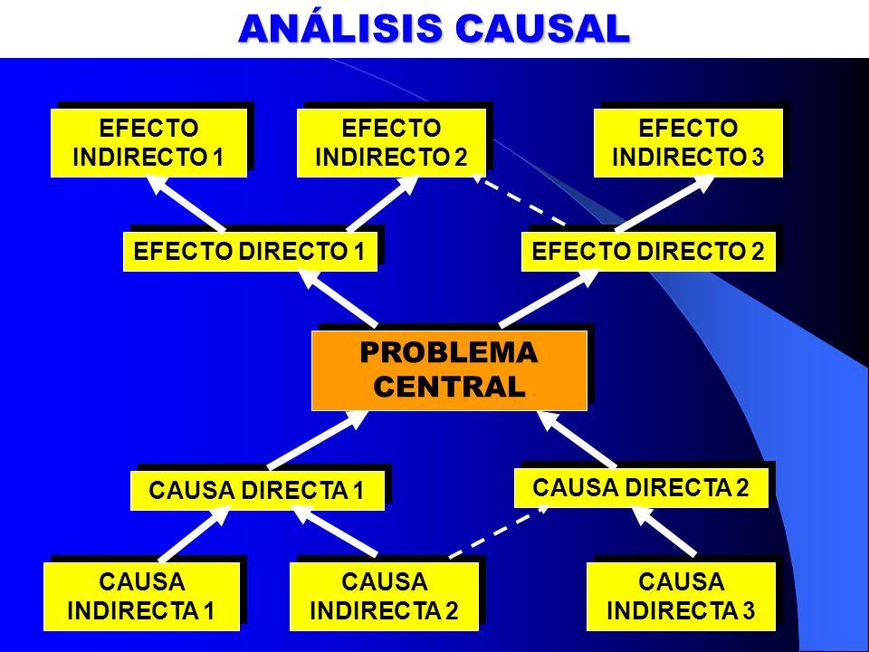 ANÁLISIS CAUSAL PROBLEMA CENTRAL EFECTO INDIRECTO 1 EFECTO INDIRECTO 2