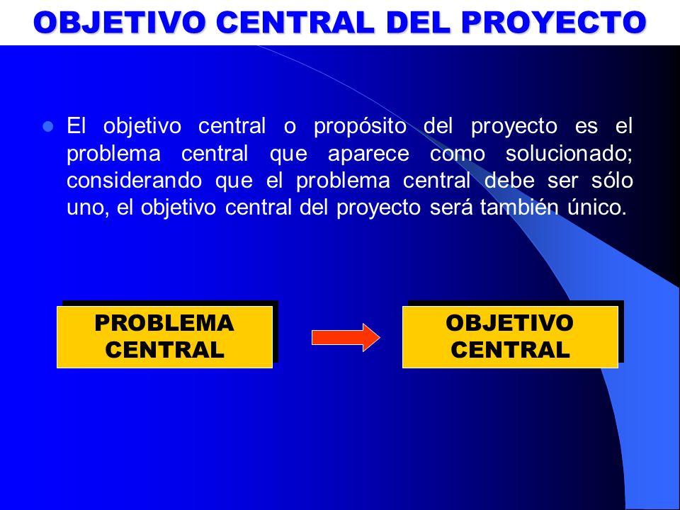 OBJETIVO CENTRAL DEL PROYECTO