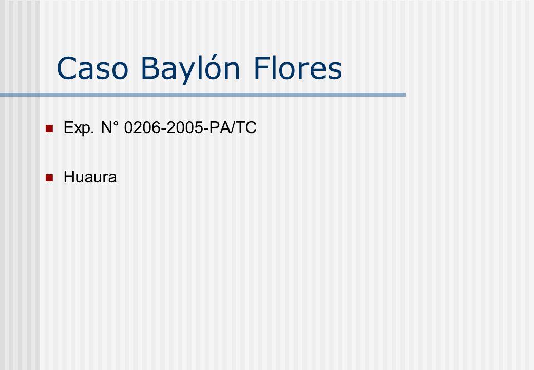 Caso Baylón Flores Exp. N° 0206-2005-PA/TC Huaura