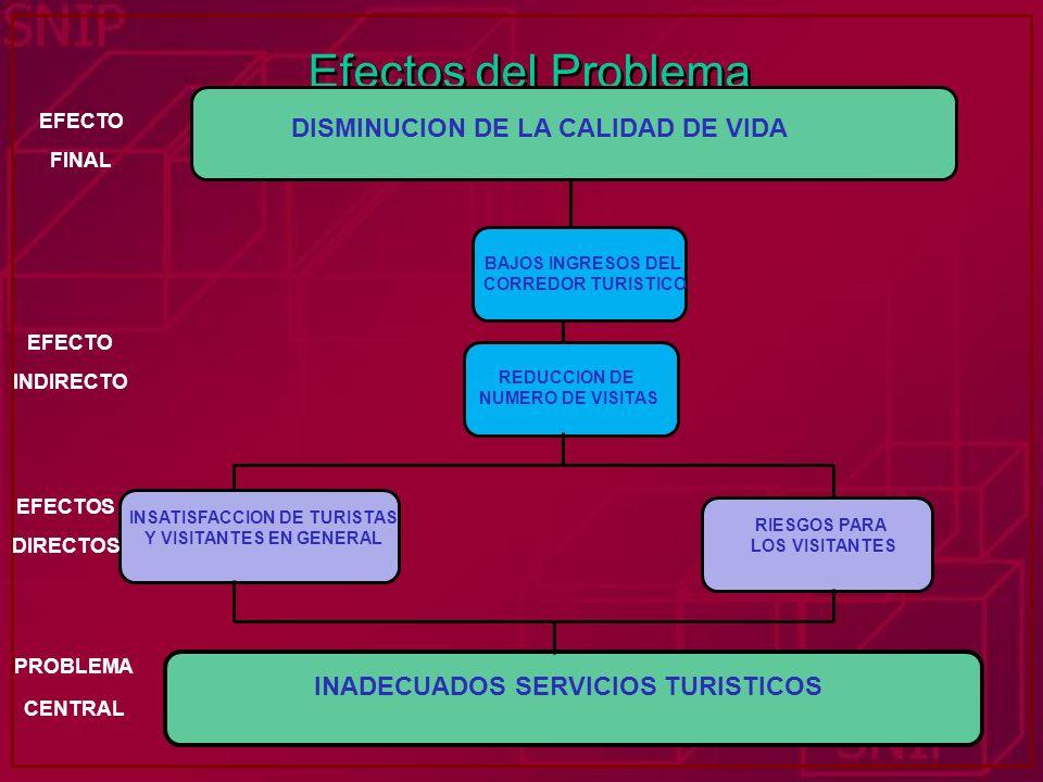 Efectos del Problema DISMINUCION DE LA CALIDAD DE VIDA