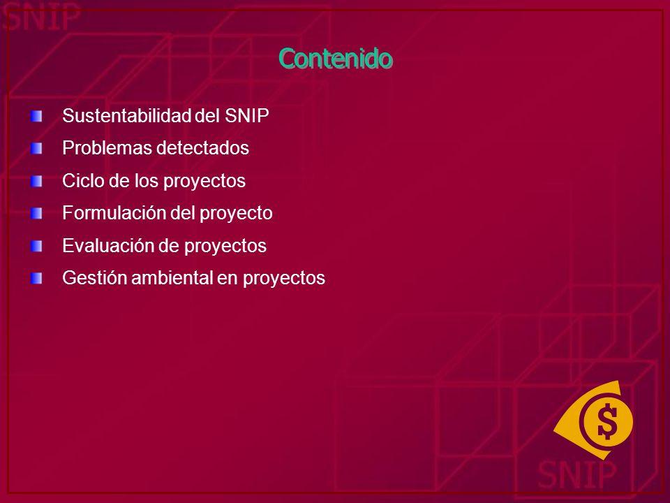 Contenido Sustentabilidad del SNIP Problemas detectados