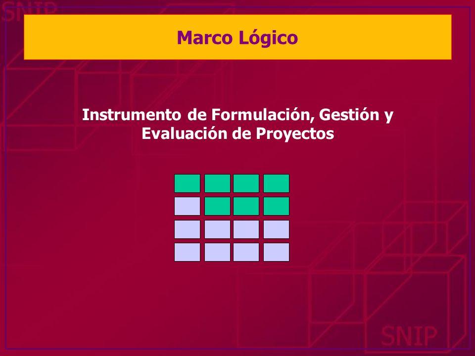 Instrumento de Formulación, Gestión y Evaluación de Proyectos