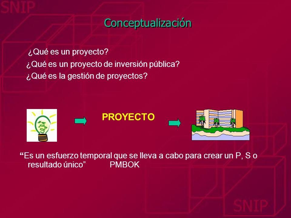 Conceptualización ¿Qué es un proyecto IDEA PROYECTO