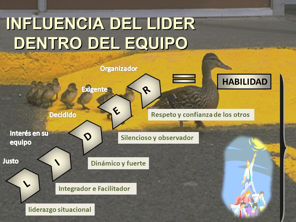 INFLUENCIA DEL LIDER DENTRO DEL EQUIPO liderazgo situacional