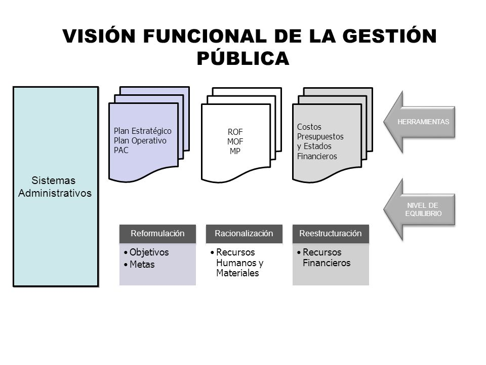 VISIÓN FUNCIONAL DE LA GESTIÓN PÚBLICA