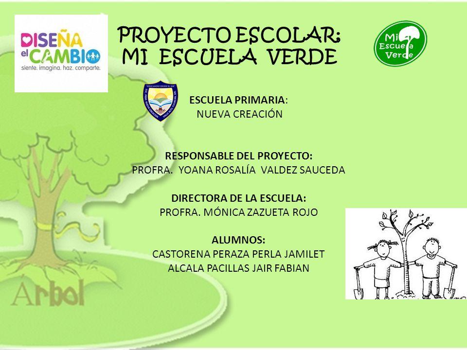 Responsable del proyecto directora de la escuela ppt for Proyecto restaurante escolar