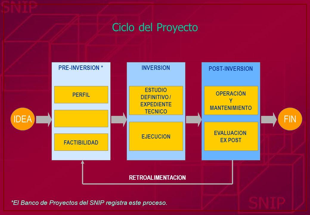 Ciclo del Proyecto IDEA FIN