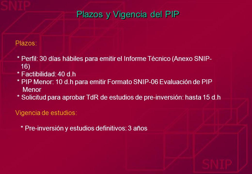 Plazos y Vigencia del PIP