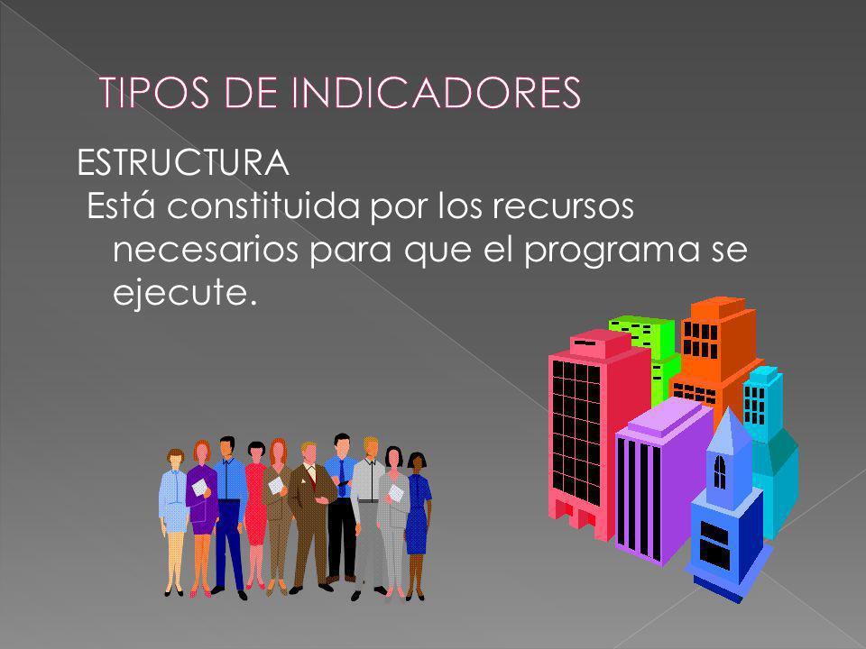 TIPOS DE INDICADORES ESTRUCTURA