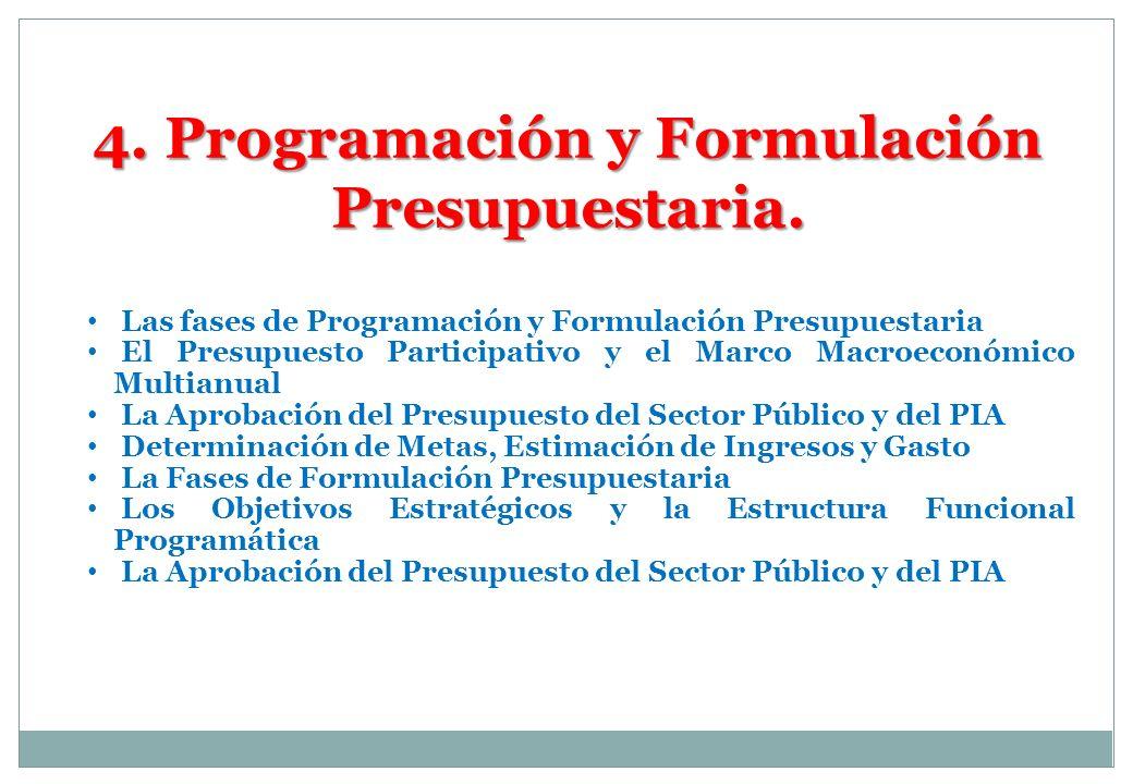 4. Programación y Formulación Presupuestaria.