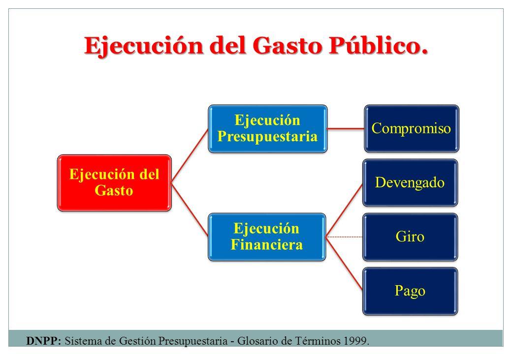 Ejecución del Gasto Público.